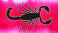 Oroscopo Scorpione settimana lavoro: ecco cosa potrebbe accadere