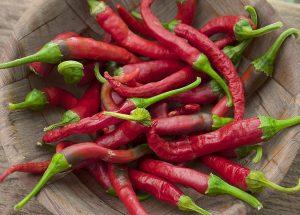 Peperoncini: coltivazione e cura di una pianta in uso in cucina