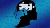 Genoma: definizione, caratteristiche e dimensioni